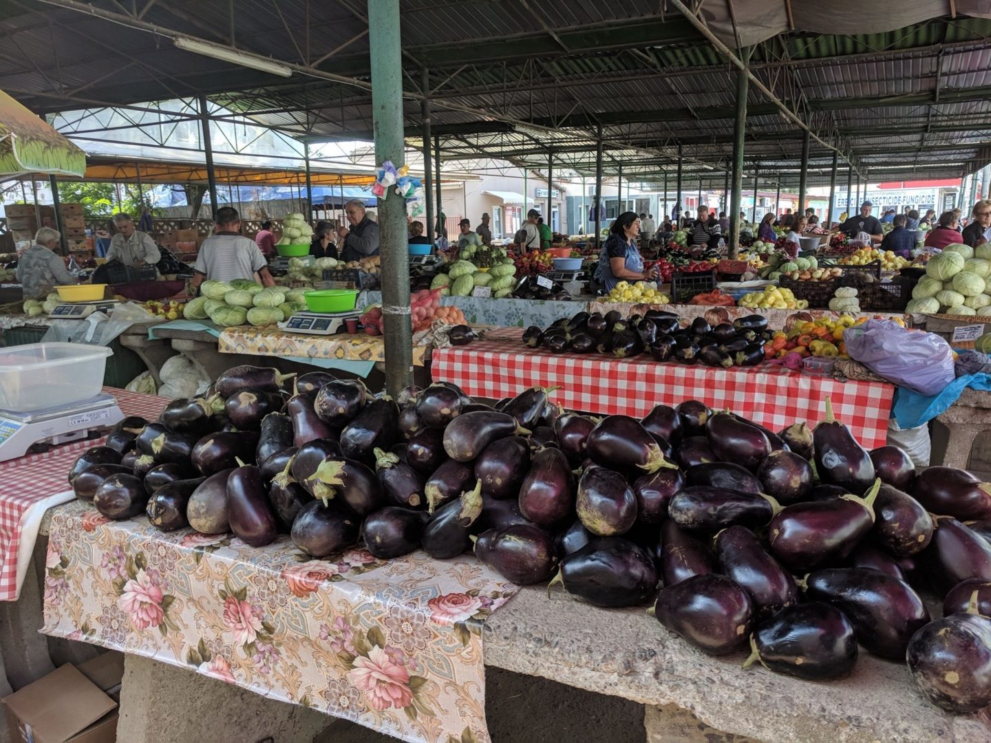 CLuj-Napoca things to do: aubergines at Turda market