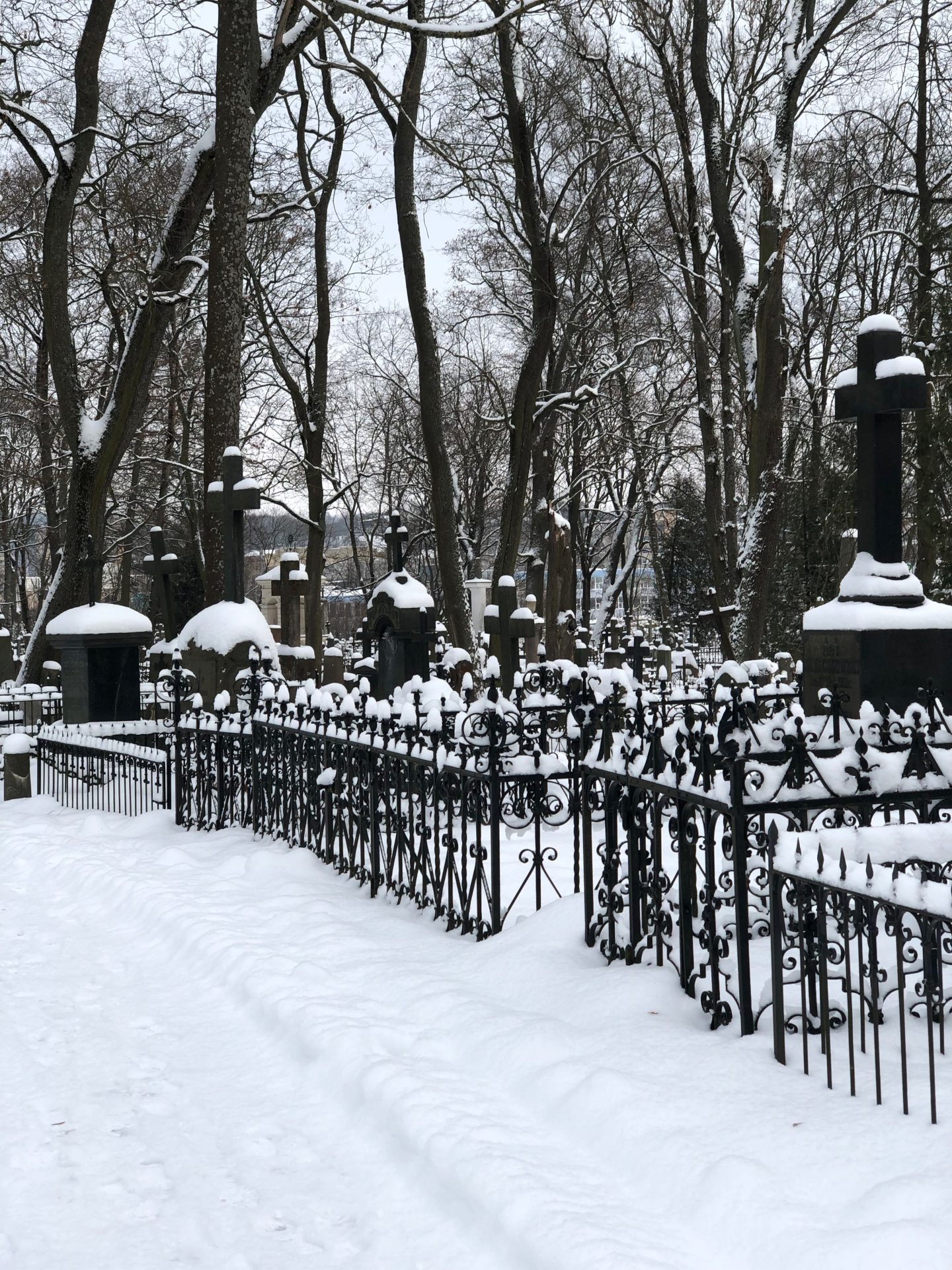 things to do in Vilnius in winter: a snow-covered cemetery