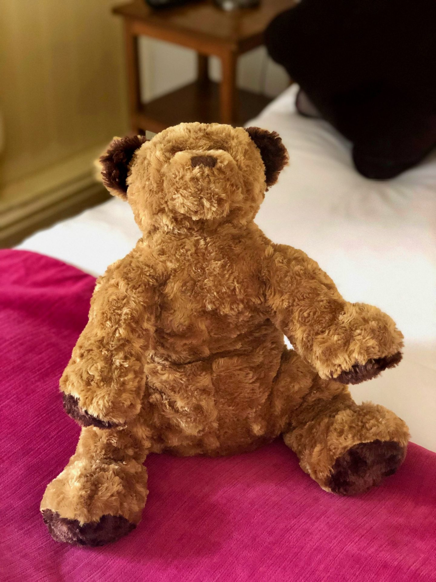 Teddy bear sat up on the bed at the black swan helmsley, sat on a bright pink throw