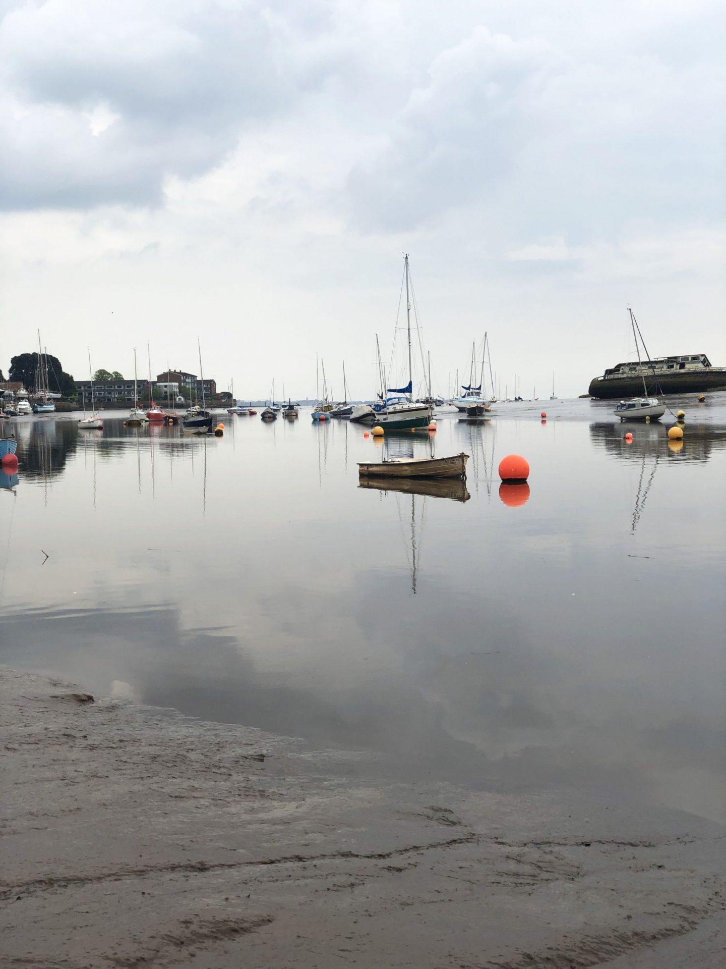 Topsham Estuary