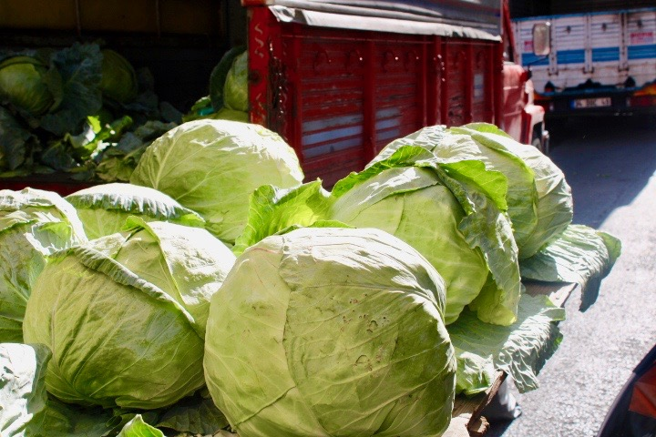 Giant cabbages in Balat market, placed on a table with a red van with more cabbages in behind