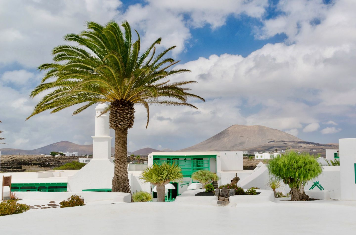 Things to do in Lanzarote: Cesar Manrique House from the outside, white with a large palm tree