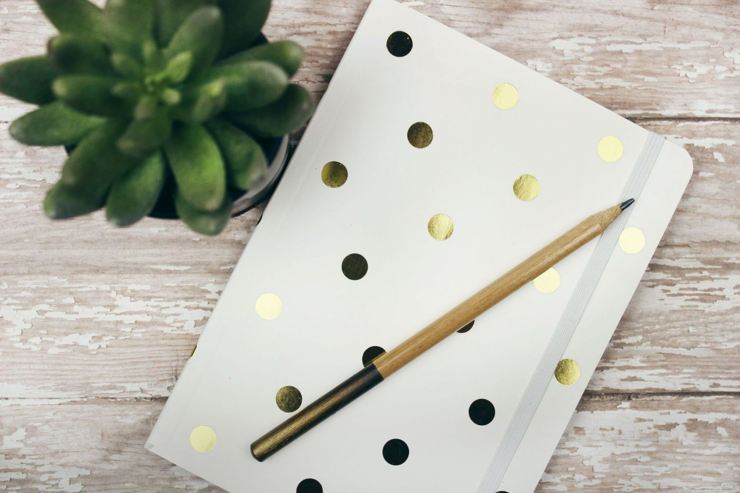 mental health during coronavirus - a white and gold polkadot notebook with a pencil placed on top and a small desk plant next to it, shot from above